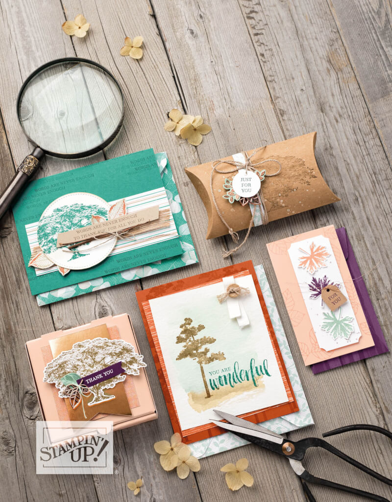 Stampin' Up! Produktreihen 2018