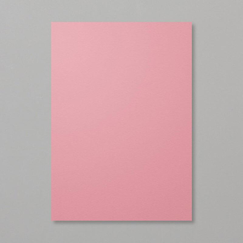 Farbkarton Rokoko-Rosa Stampin Up In Color Farbe 2019 - 2021 - 150888