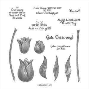Stempelset Tulpengrüße 152212 Distinctive-Stempel