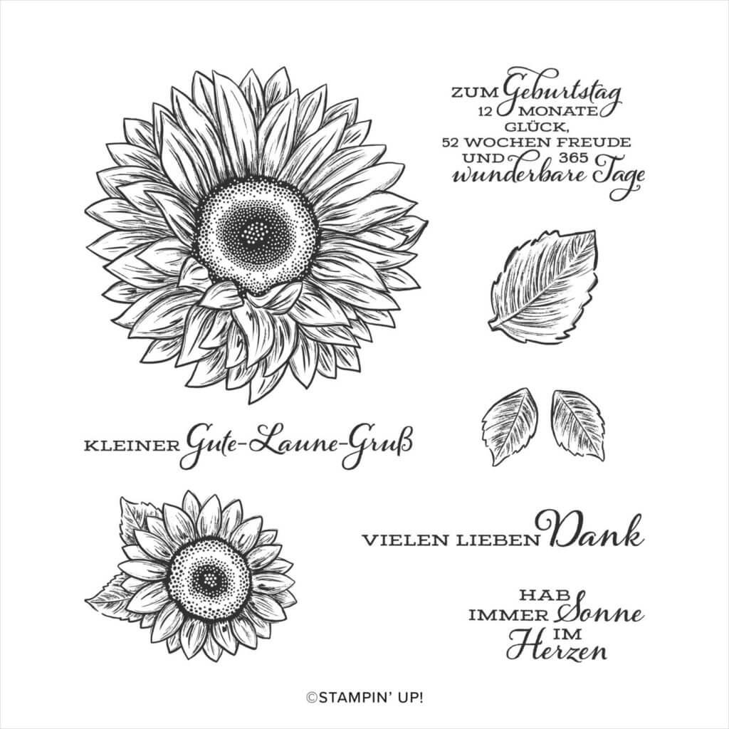 Stempelset Gute-Laune Gruß 152912