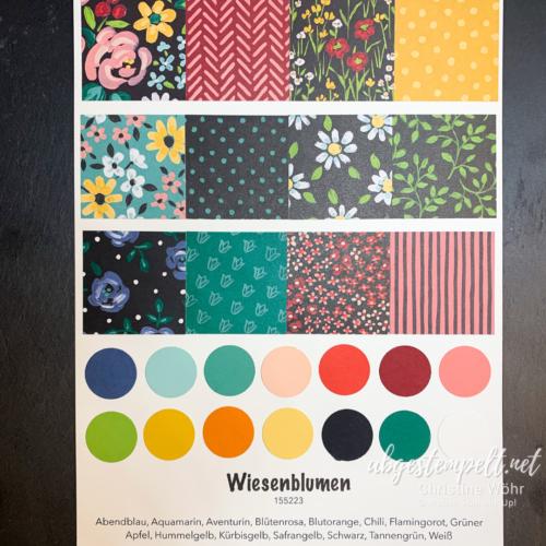 Designerpapier Wiesenblumen Stampin up Vorstellung