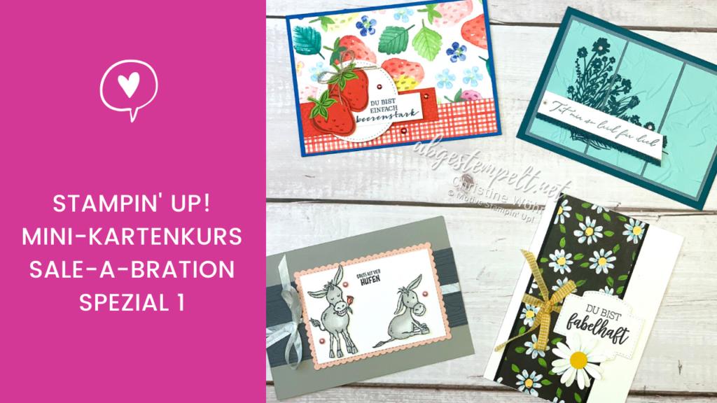 Blogpost Stampin' Up! Mini-Kartenkurs Februar Sale-A-Bration Spezial 1 abgestempellt